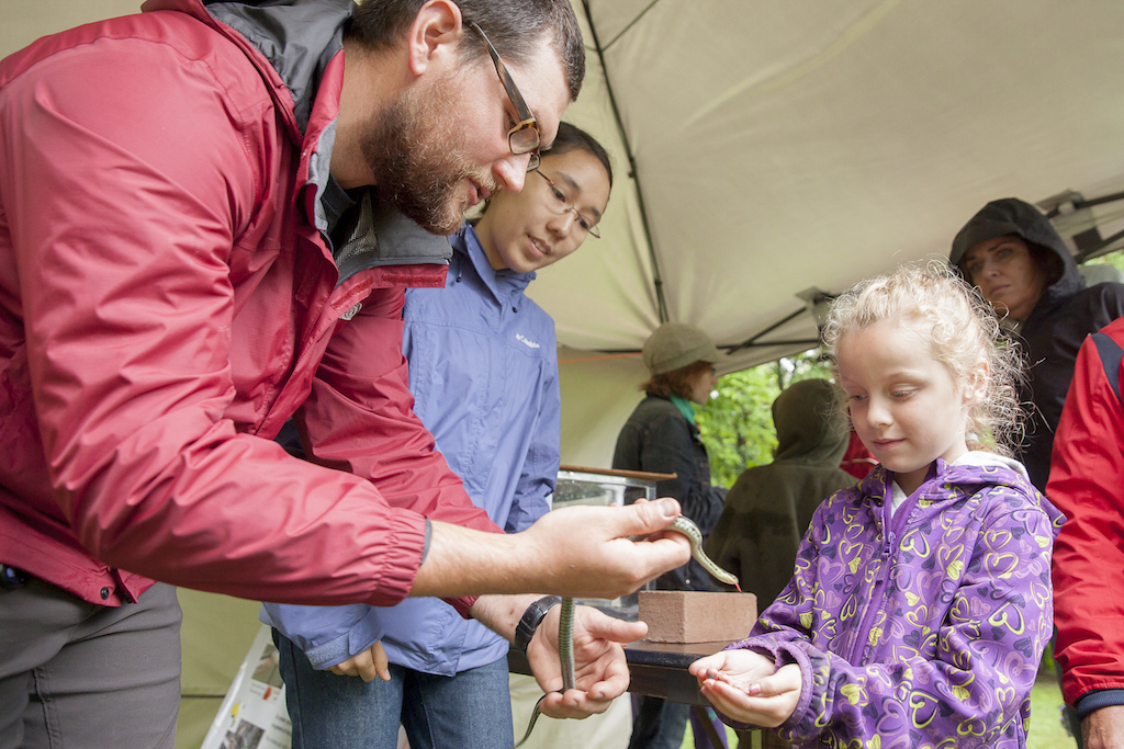 Bill Halliday and Ashley Bramwell showing a snake to one of our Open House 2015 guests.